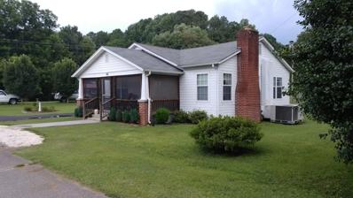 356 Lavender St, Spring City, TN 37381 - MLS#: 1053409