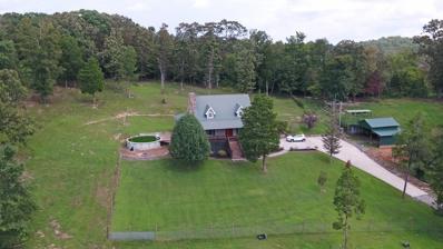 1374 Tom Garrison Rd, Evensville, TN 37332 - MLS#: 1054498