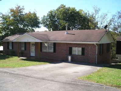 117 Crestwood Circle, Decatur, TN 37322 - MLS#: 1059534