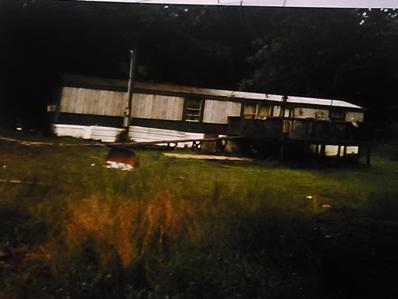1535 Parrotts Chapel Road, Sevierville, TN 37876 - #: 1071872