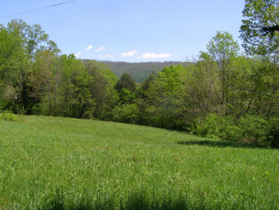 3.44 Acres 28 Old State Hwy, Pikeville, TN 37367 - MLS#: 910884