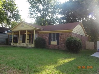4052 Windermere Dr, Memphis, TN 38128 - #: 10023930