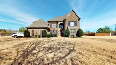 11040 Shelby Post Rd, Collierville, TN 38017 - #: 10046033