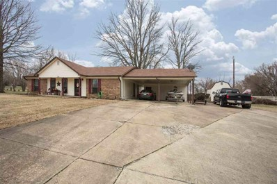 145 David Cv, Unincorporated, TN 38023 - #: 10047635