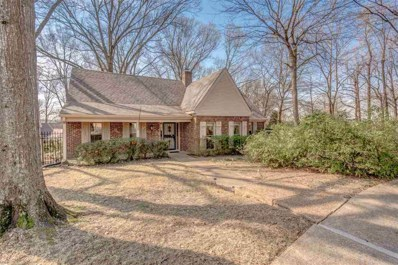 134 Country Pl, Memphis, TN 38018 - #: 10048522