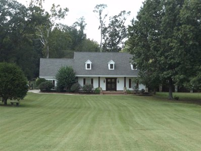 850 Schaeffer Loop, Unincorporated, TN 38028 - #: 10049100