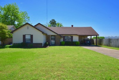 6897 Hillshire Dr, Memphis, TN 38133 - #: 10051356