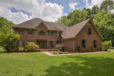 310 Nivens Dr, Unincorporated, TN 38004 - #: 10053480