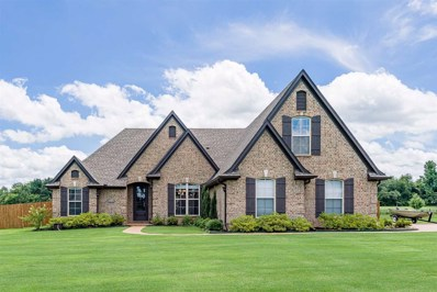 210 Pearl Dr, Somerville, TN 38068 - #: 10055991