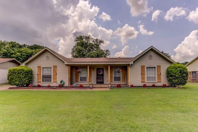 2453 Boysenberry St, Bartlett, TN 38134 - #: 10057274