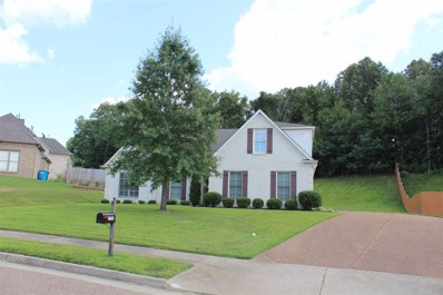 12295 Chapel Meadow Ln, Arlington, TN 38002 - #: 10059350