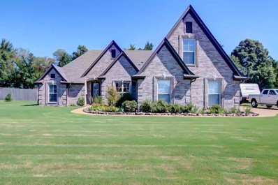 315 Pearl Dr, Somerville, TN 38068 - #: 10059896