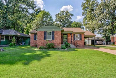 817 Chatwood St, Memphis, TN 38122 - #: 10061344