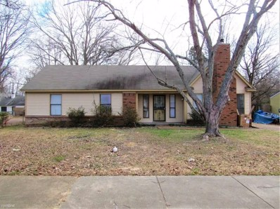 5802 Lake Port Dr, Unincorporated, TN 38053 - #: 10063143