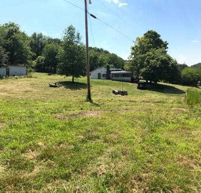 73 Martin Hollow Rd, Pleasant Shade, TN 37145 - MLS#: 1954827