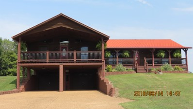 435 Grices Creek Rd, Cumberland City, TN 37050 - MLS#: 1960988