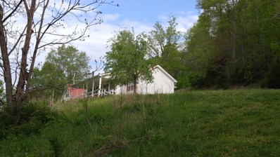 132 Little Creek Rd, Pleasant Shade, TN 37145 - MLS#: 1965072