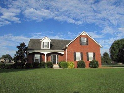 121 Meadowland Ct, Manchester, TN 37355 - MLS#: 1968022