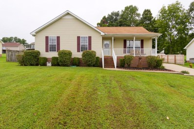 699 Red Hollow Dr, Springfield, TN 37172 - MLS#: 1970431