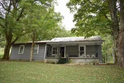 28 William Carter Hollow Ln, Pleasant Shade, TN 37145 - MLS#: 1970545