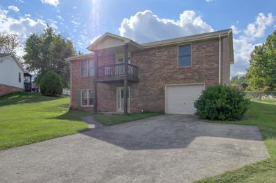 311 Arrowood Dr., Clarksville, TN 37042 - MLS#: 1971981