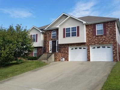 3397 Quicksilver Court, Clarksville, TN 37042 - MLS#: 1976016