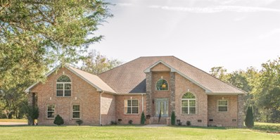 207 Saint Blaise Ct, Gallatin, TN 37066 - MLS#: 1980980