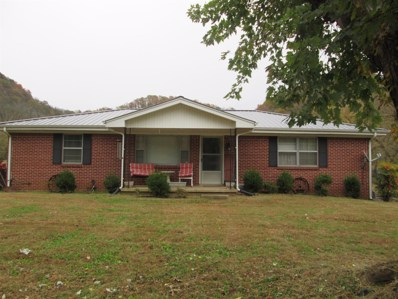 810 Dog Branch Rd, Dixon Springs, TN 37057 - MLS#: 1987279