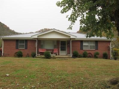 810 Dog Branch Rd, Dixon Springs, TN 37057 - MLS#: 1987311