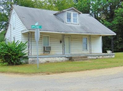 222 Appletree St, Mount Pleasant, TN 38474 - MLS#: 1987341