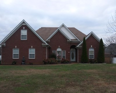813 Chaqueta Ct, Smyrna, TN 37167 - MLS#: 1994038