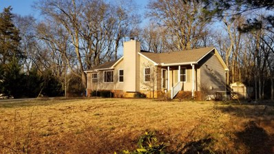 131 Neal Ave, Smyrna, TN 37167 - MLS#: 1995034
