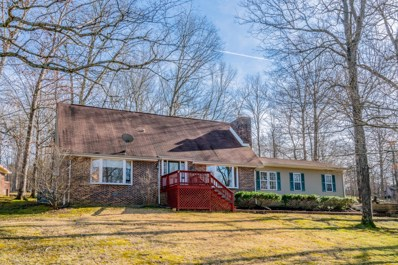 113 Stephen Nicks Drive, Dickson, TN 37055 - MLS#: 2015637