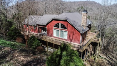 284 Lakewood Road, Silver Point, TN 38582 - MLS#: 2021587
