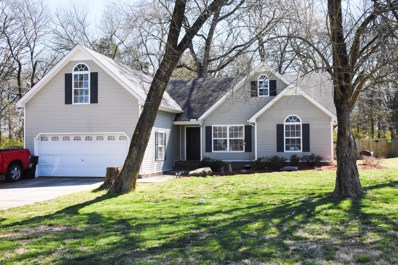 4221 Nandina Ct., Murfreesboro, TN 37129 - MLS#: 2022894