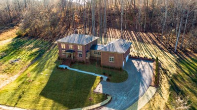 4017 Grace Creek Valley Ln, Thompsons Station, TN 37179 - MLS#: 2109731