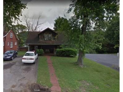 916 East Watauga Ave, Johnson City, TN 37601 - #: 415560
