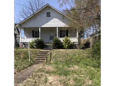 711 E Fairview, Johnson City, TN 37601 - #: 419345