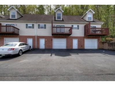 308 Car Mol Drive 308 UNIT 18, Johnson City, WA 37601 - #: 420236