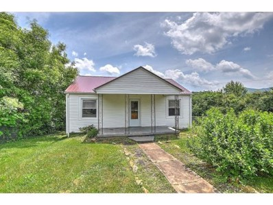 212 Young Street, Johnson City, TN 37601 - #: 421847