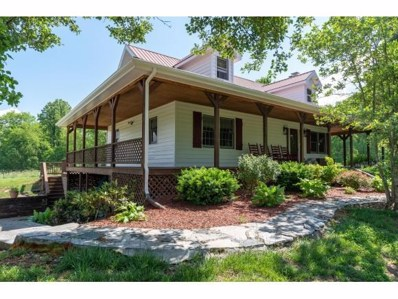 131 Laurels Road, Johnson City, TN 37601 - #: 422075