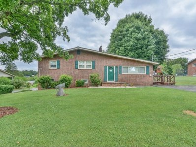 115 Woodcrest Lane, Johnson City, TN 37601 - #: 422865