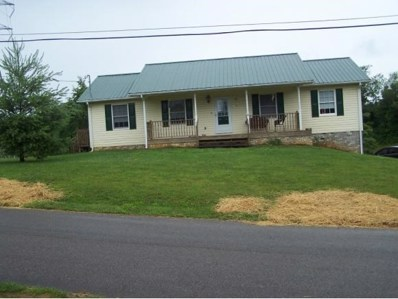 2214 Lauderdale Drive, Johnson City, TN 37601 - #: 423368