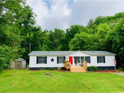 531 Laurels Road, Johnson City, TN 37601 - #: 424594