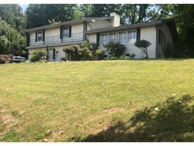 19250 Oakwood Drive, Abingdon, VA 24211 - #: 424784