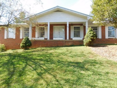 812 North Hills Drive, Johnson City, TN 37604 - #: 425737