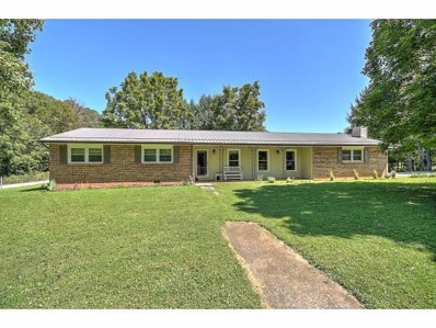 101 Jewel St, Johnson City, TN 37601 - #: 426721