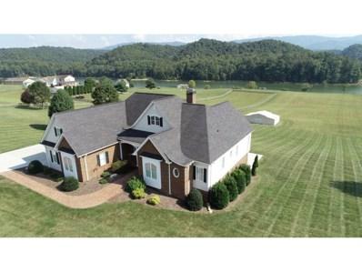 24263 Eagle Site Drive, Abingdon, VA 24211 - #: 427243