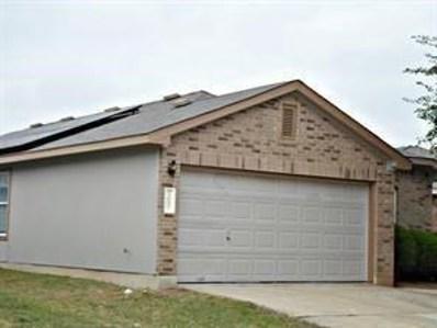3002 Crownover St, Austin, TX 78725 - MLS##: 1030058