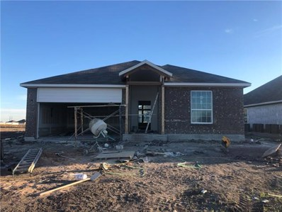 505 Hendelson Lane Ln, Hutto, TX 78634 - MLS##: 1076116
